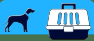 Μεταφορά