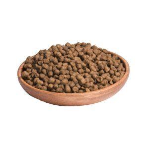 dog food pic859